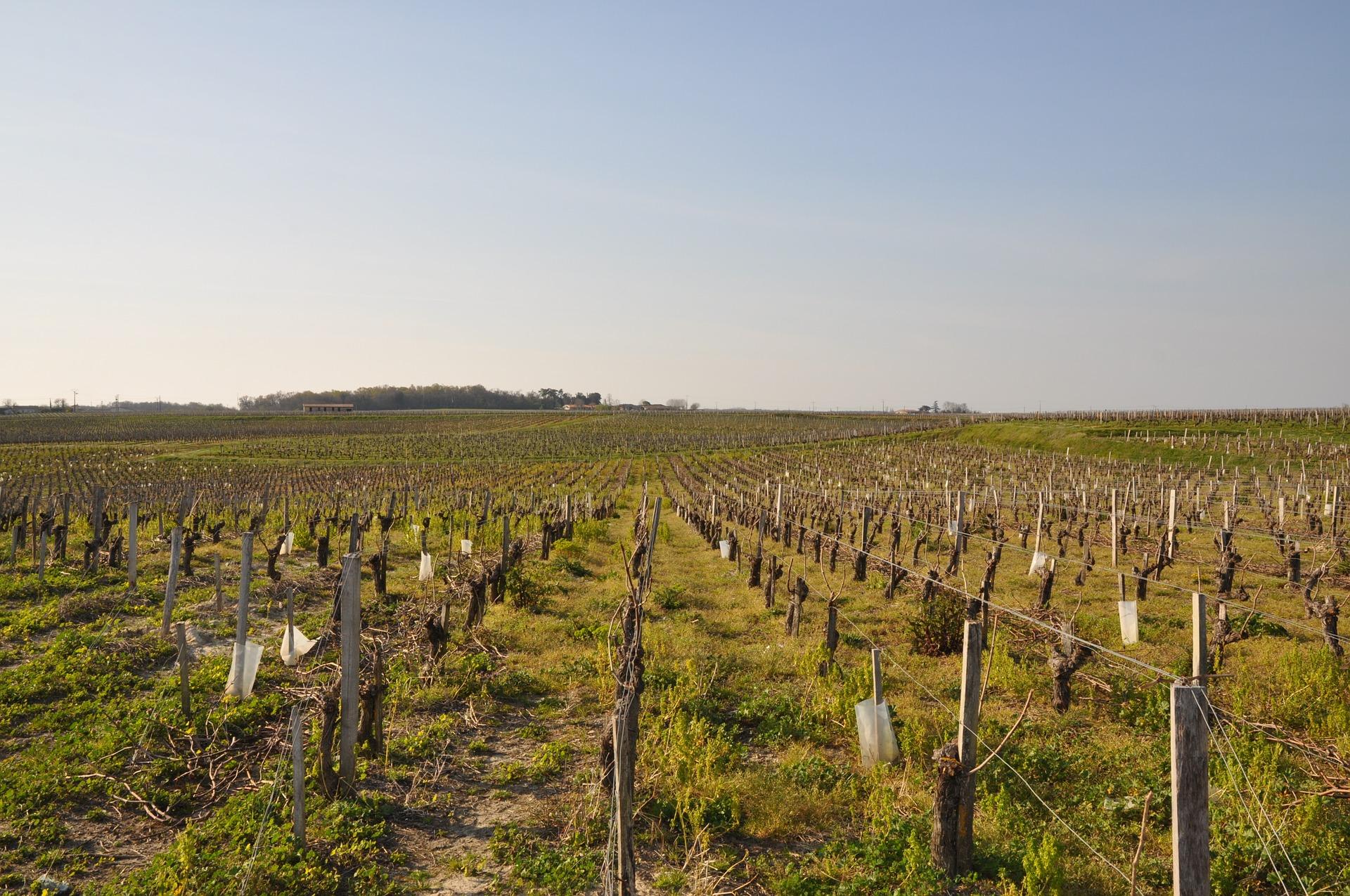 Gironde-France-pas cher